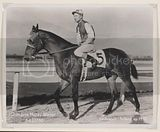 Seabiscuit one of the most famous racehorses the ever lived